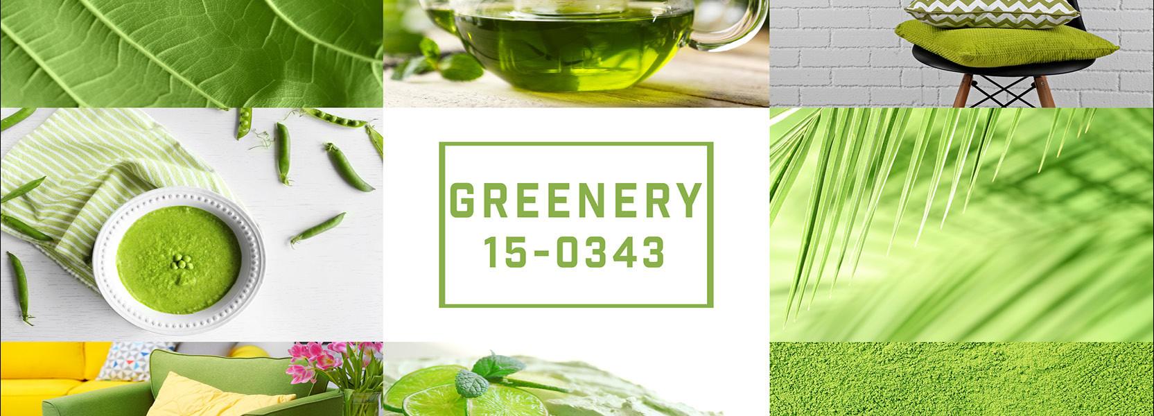Die Farbe des Jahres 2017 - Greenery
