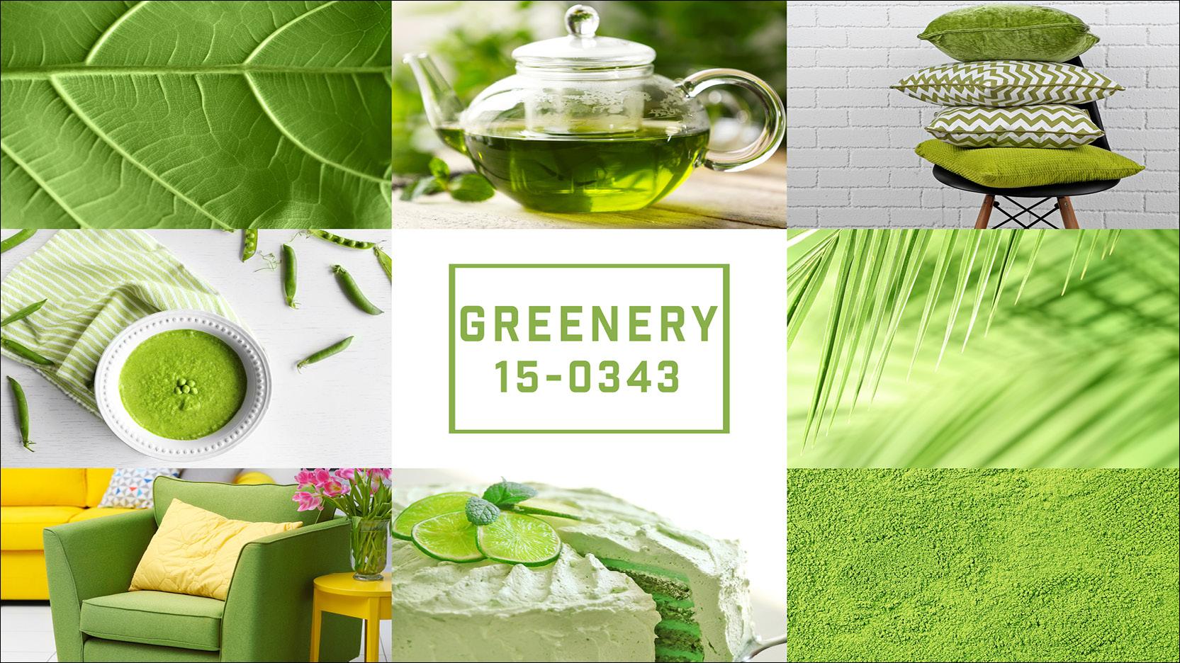 Die Farbe der Saison 2017 - Greenery