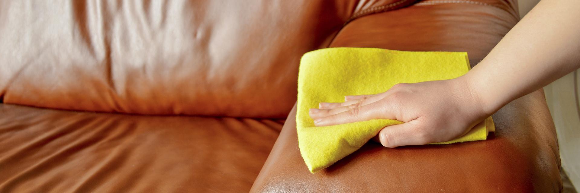 Sofa reinigen scheuern